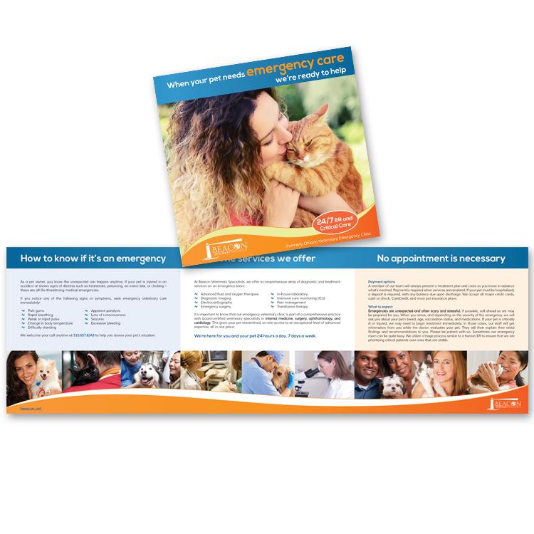 Portfolio | BluePrints Veterinary Marketing Group