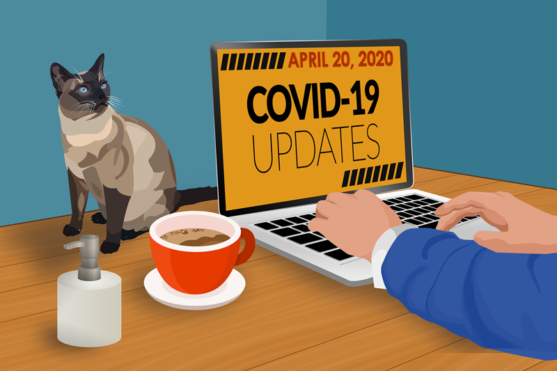 Image: Best Practices for Marketing Your Veterinary Practice During COVID-19