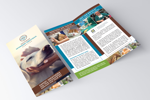 Should our referral practice still print brochures even though most of our information is on our website