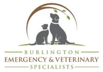 Image: Burlington Emergency & Veterinary Specialists