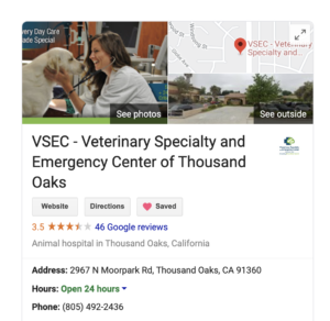 Local SEO veterinary